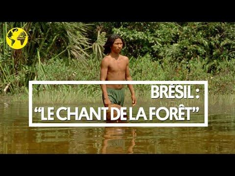 """Brésil : la bande-annonce du film """"Le Chant de la forêt"""", voyage au paradis des indiens Krahô"""