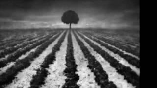 "Arcana ""The calm before storm"" (with photos by Dariusz Klimczak)"