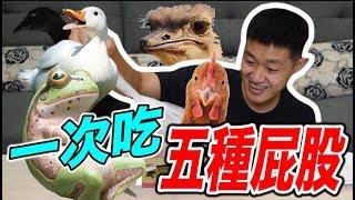 【狠愛演】大挑戰!一次吃五種動物的屁股! 😱😱😱『那畫面太美我不敢看』😱😱
