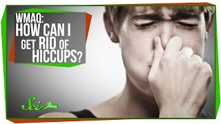 Worlds Most Asked Questions: How Can I Get Rid Of The Hiccups?