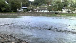 飯能河原のイメージ
