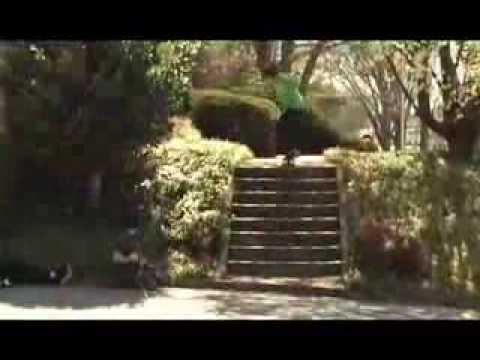 preview image for Zoo York Atlanta Skate Trip