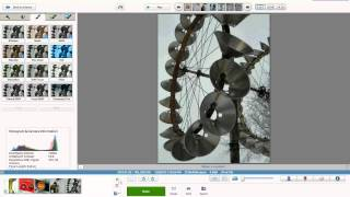 Picasa video tutorial