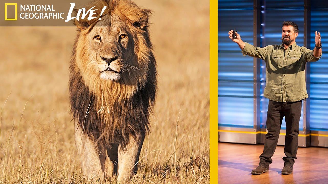 Filming Africa's Top Predators : Beyond 'Savage Kingdom' (Part 2)   Nat Geo Live thumbnail