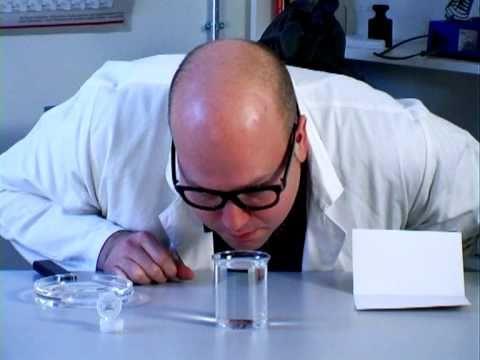 Triops züchten, KOSMOS-Experimentierkasten