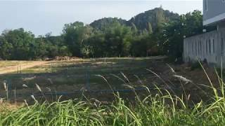 2 Rai Land Plot for Sale Ready to be Developed in Sai Thai, Krabi