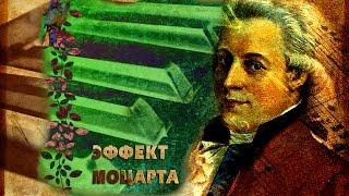 Михаил Казиник. 1. Классика жанра Вольфганга Амадея Моцарта.