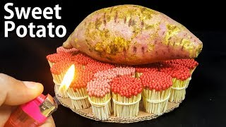 EXPERIMENT Match Vs Sweet Potato