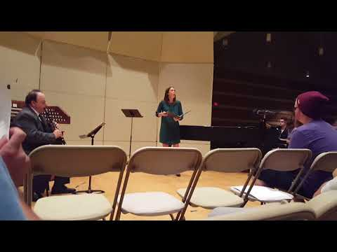 Performed THE SHEPHERD ON THE ROCK, Franz Schubert, on Wednesday, October 4, 2017, with Soprano, Toni Esker, and pianist, Candace Peters.