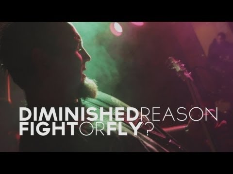 Diminished Reason - Fight Or Fly?
