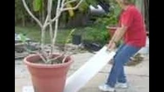 How to Move heavy potted plant by yourself