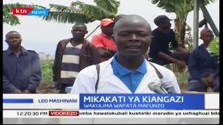 Wakulima wapata mafunzo Kiserian, kaunti ya Kajiado