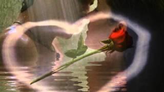 """Was wär die Liebe ohne Rosen"""""""""""""""""""""""" Maxi Arland"""