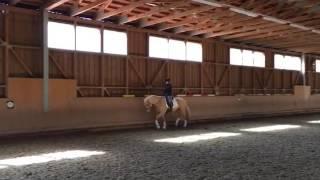 Video von Don Diablo