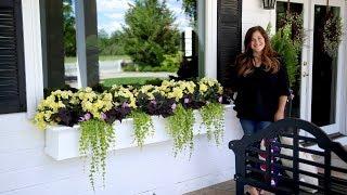 Gorgeous Shade Arrangement In Window Boxes 🌼🌿 // Garden Answer