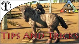 Fast Equus (Horse) Taming Guide :: ARK : Survival Evolved Tips and Tricks