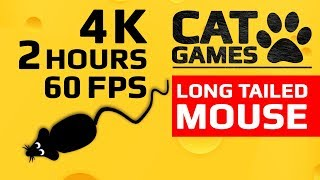 CAT GAMES - LONG TAILED MOUSE (ENTERTAINMENT VIDEO FOR CATS TO WATCH) 4K 60FPS 2 HOURS