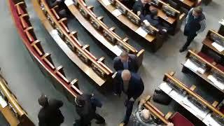 Депутаты вывели Савченко из Рады