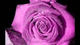 Hoy Como Ayer - Conjunto Primavera  (Video)