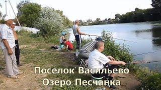 На озере деревенские ребятишки увлеклись рыбной ловлей