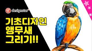기초디자인 수채화 자연물 채색 앵무새 그림 그리기