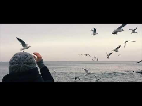 в. понкин - одно море