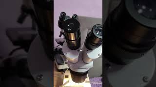 Приладили окуляр от мбс-1