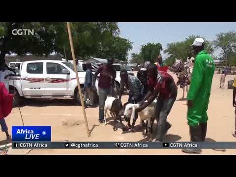 Boko Haram killed at least 135 farmers between 2012 and 2016.