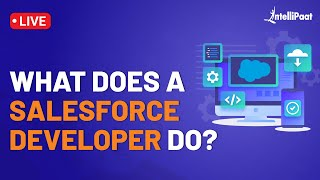 What Does a Salesforce Developer Do | Salesforce Developer Roles and Responsibilities