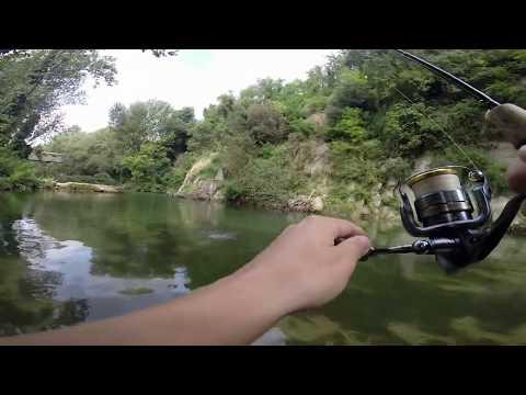 Come fare la pasta per pisello da pesca