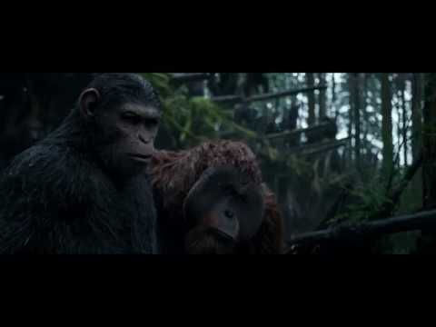 War for the Planet of the Apes Apes Channel 4 Ad Break
