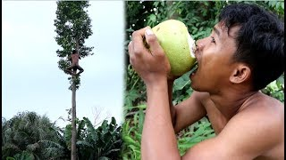 Primitive Technology: Finding Fruit in The Forest Orange For Eat
