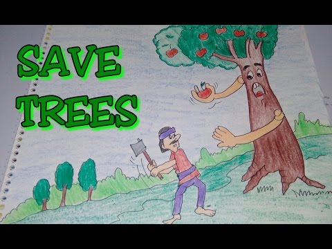 save our jungles essay