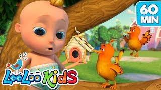 Two Little Dickie Birds  Educational LooLoo KIDS Songs