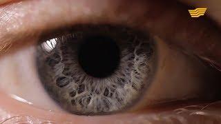 Опасность глаукомы глаукома: причины и проявления