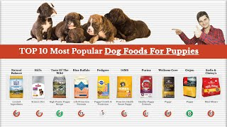 Top 10 Most Popular Dog Foods For Puppies Reviewed By Dog Food Judge 🏆
