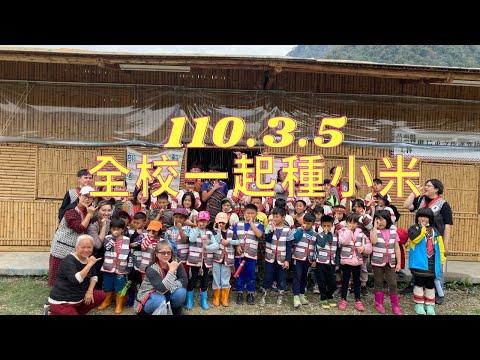 110.03.05 蘇魯部落馬拉乎文化產業協會種小米的圖片影音連結