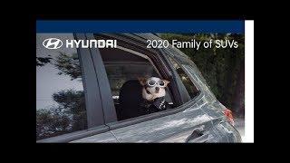 Kona   2020 Family of SUVs   Hyundai