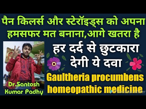 Homeopathic Drugs - Wholesaler & Wholesale Dealers in India