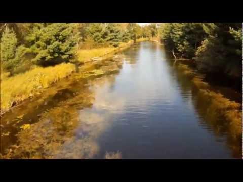 Underwater view of fish life Houghton Lake, underwater backwaters fishing video, GoPro camera action