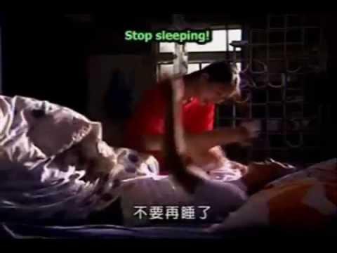 Vic Zhou and Barbie Xu(Zaizai and Da S) On Bended Knee