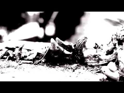Lhostejnost - Lhostejnost - Více než člověk, méně než hmyz