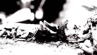 Video Lhostejnost - Více než člověk, méně než hmyz