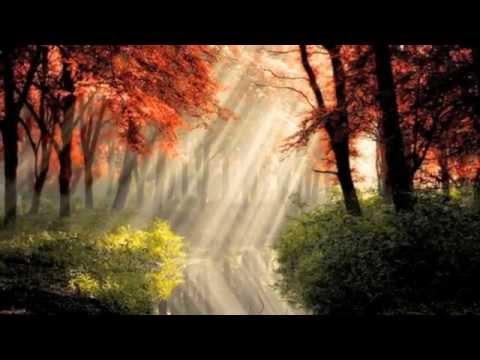 Kevin Keller - Unfolding
