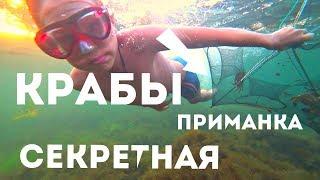 Как ловить крабиков на черном море