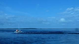 Морской порог Сигосельга, остров Олений, Белое море