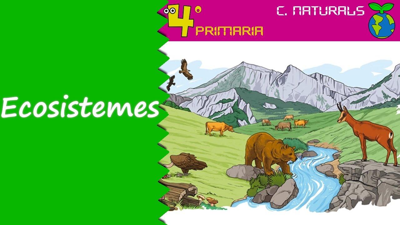 Ciències de la Naturalesa. 4t Primària. Tema 5. Els ecosistemes