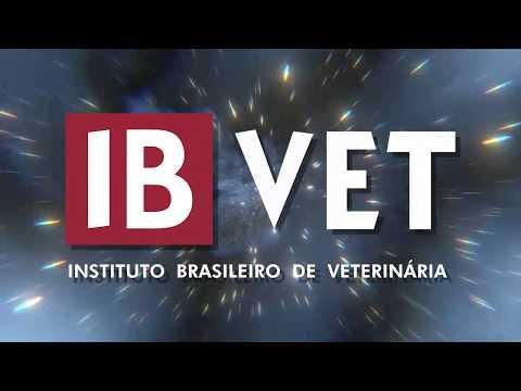 IBVET