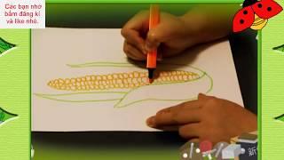 Dạy bé tập vẽ, bé vẽ trái bắp ngô