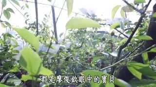 【農夫與他的田】20140426 - 三星有機梨田